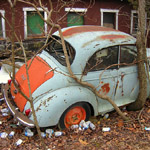 Morris Minor with a tree growing through and around it