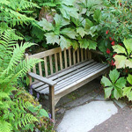 Bench swamped with plants